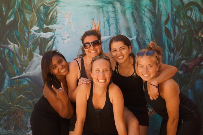 Catalina Field Crew 2014: (left to right) Cierra Lockhart, Megan Williams, me, Alma Thomas, Alyssa Millikin